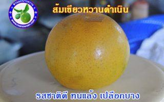 ส้มดำเนิน